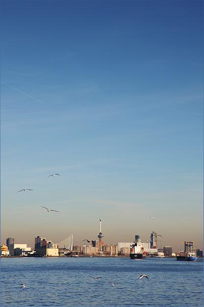 Uitzicht op Rotterdam over de Maas vanaf Schiedam