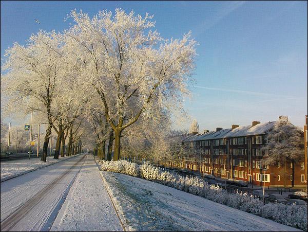 Sneeuw op de Schiedamseweg (Rotterdam), Sony Ericsson T650