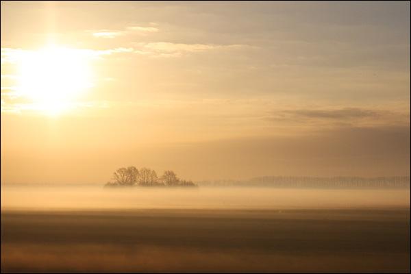 Polder landschap tussen Gouda en Woerden