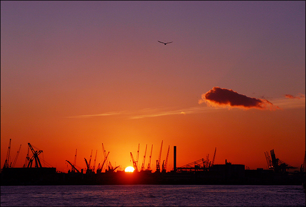 Zonsondergang boven de Maas